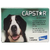 Antipulgas Elanco Capstar 57mg na internet