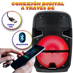 Parlante Bluetooth Portatil - Microfono Control y Luces Led - He-09 en internet