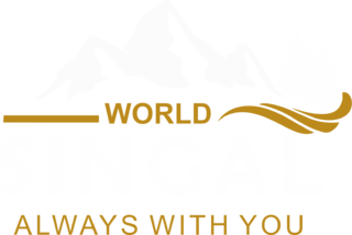 Singal World