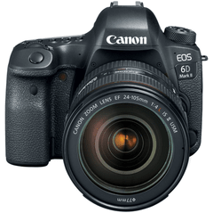 Canon 6D Mark II EF 24-105mm f/4L IS II USM