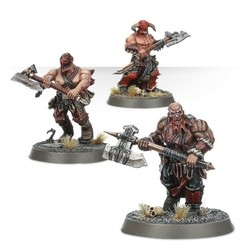 WARHAMMER AGE OF SIGMAR START COLLECTING! BLOODREAVERS - Pittas Board Games