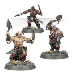 WARHAMMER AGE OF SIGMAR START COLLECTING! BLOODREAVERS na internet