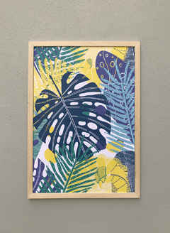 Monstera azul