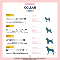 KIT- COLLAR PAPERCUTS GREEN - be-dog.com
